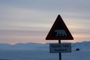 Eisbärengefahr sobald man die Siedlung verlässt.