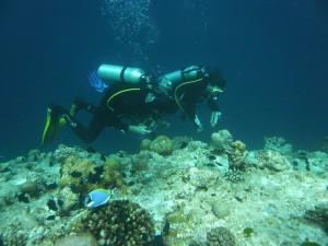 Taucher bei der Arbeit an der Oberkante des steilen Riffabhangs. Hier fällt das Meer abrupt hunderte Meter in die Tiefe ab. Foto: Julia Wöger.