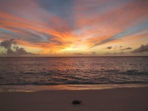 Nach einem langen Arbeitstag auf der Insel wurden die Lehrveranstaltungs-Teilnehmer mit einem atemberaubenden Sonnenuntergang belohnt: Ein unvergesslicher Anblick! Foto: Julia Türtscher.