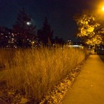 Rudolf-Bednar-Park bei Nacht