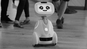 Photo 1: The robot BUDDY, developed by Blue Frog Robotics, is designed to improve the everyday life of people. Source: https://upload.wikimedia.org/wikipedia/commons/6/6e/Buddy-robot.jpg