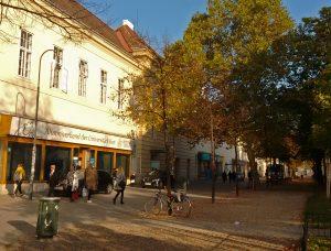 Unser Standort am Campus der Universität Wien (© Alumniverband Universität Wien)