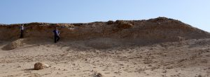 Ein fossiles Riff