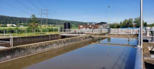 Arzneimittel und andere Chemikalien können via Abwasser in die Umwelt gelangen